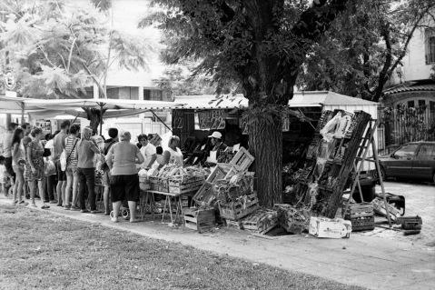 Analógicas: Feria