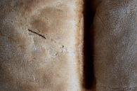 Gastronomía: Textura