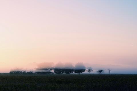 Exteriores: Cielo de niebla