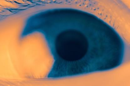 Lúdicas: El ojo